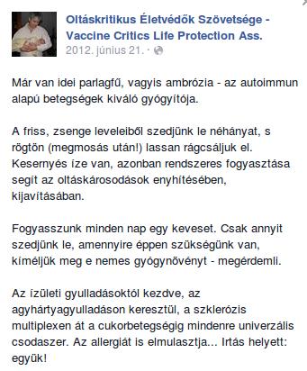 parlagfu_oltas