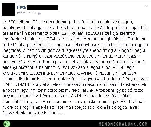 pata lsd11