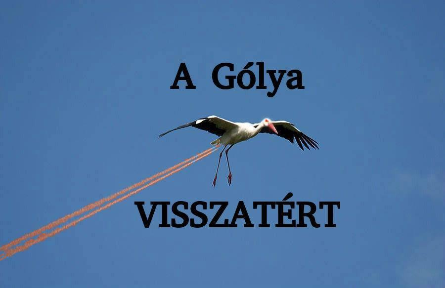 golya visszatert