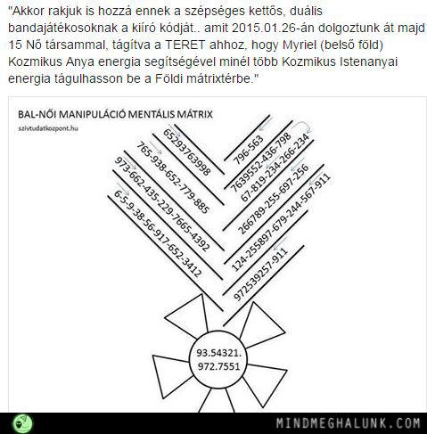 mentalis matrix