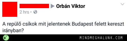 orban-csikok