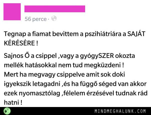 csipp