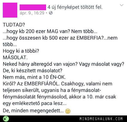 masolatok