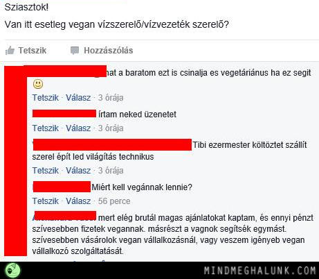 vegan-szerelo