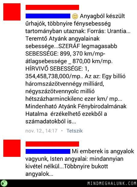 tort-szam2